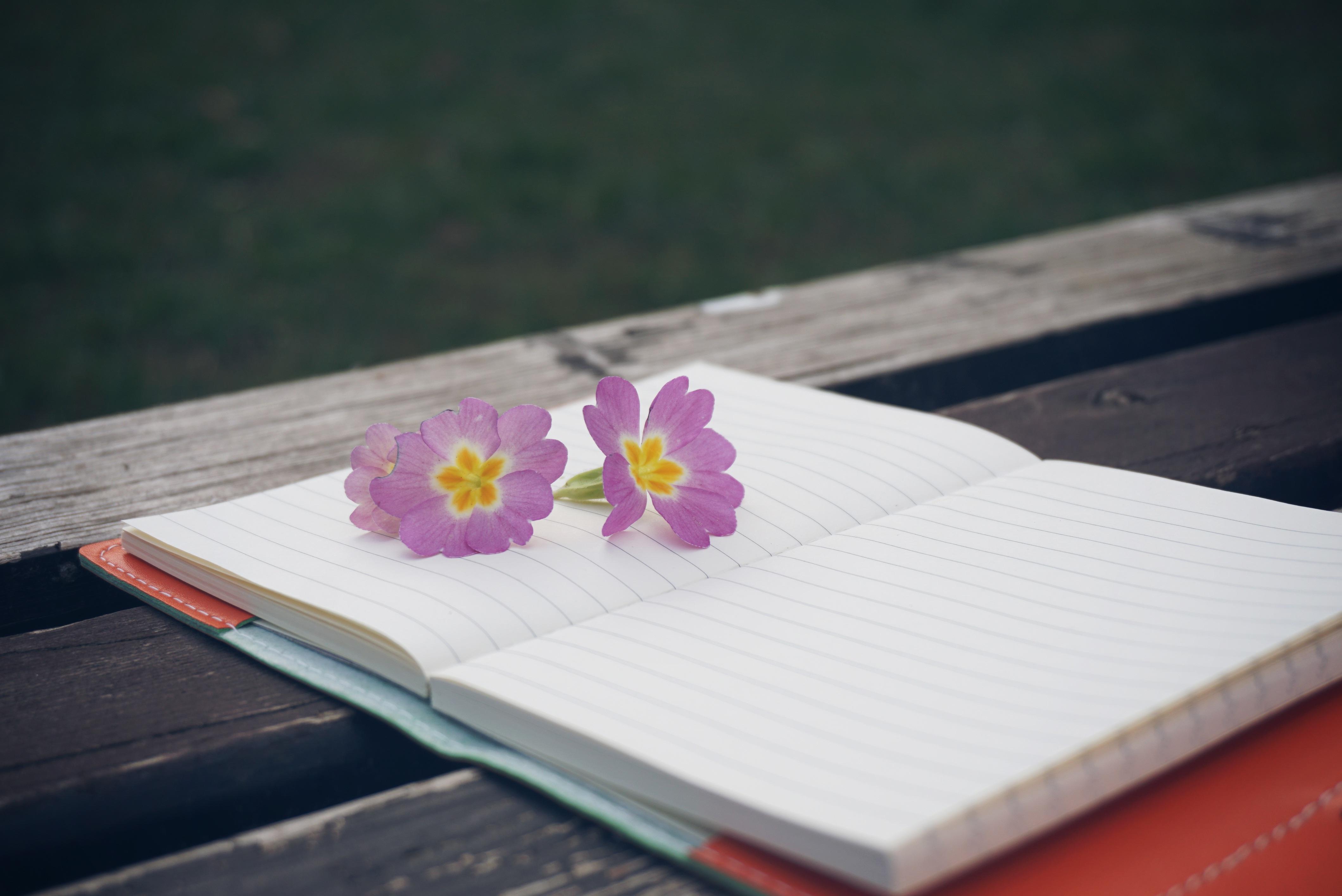 La posta di Pepitosa: la lettera di C.